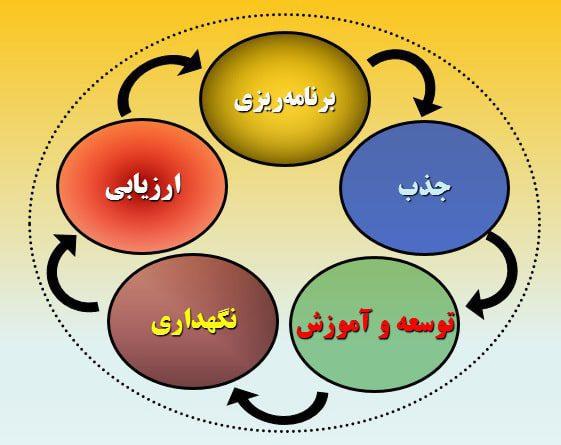 توسعه مدیریت منابع انسانی